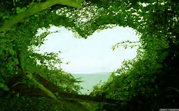 Heart nature
